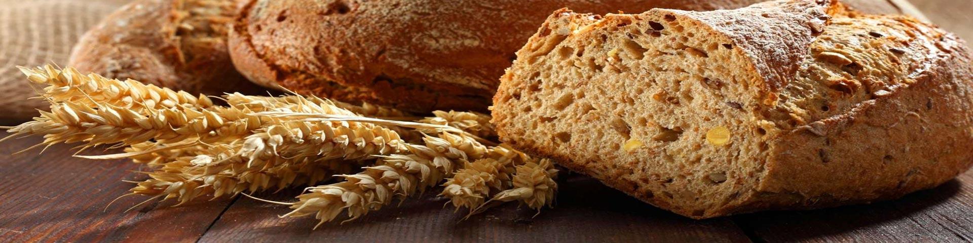 Всё о хлебе