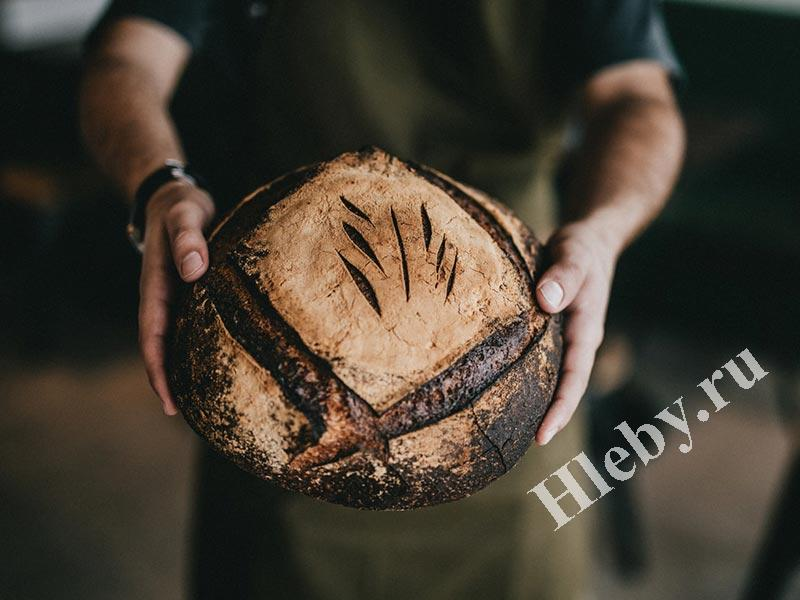 Всё про хлеб